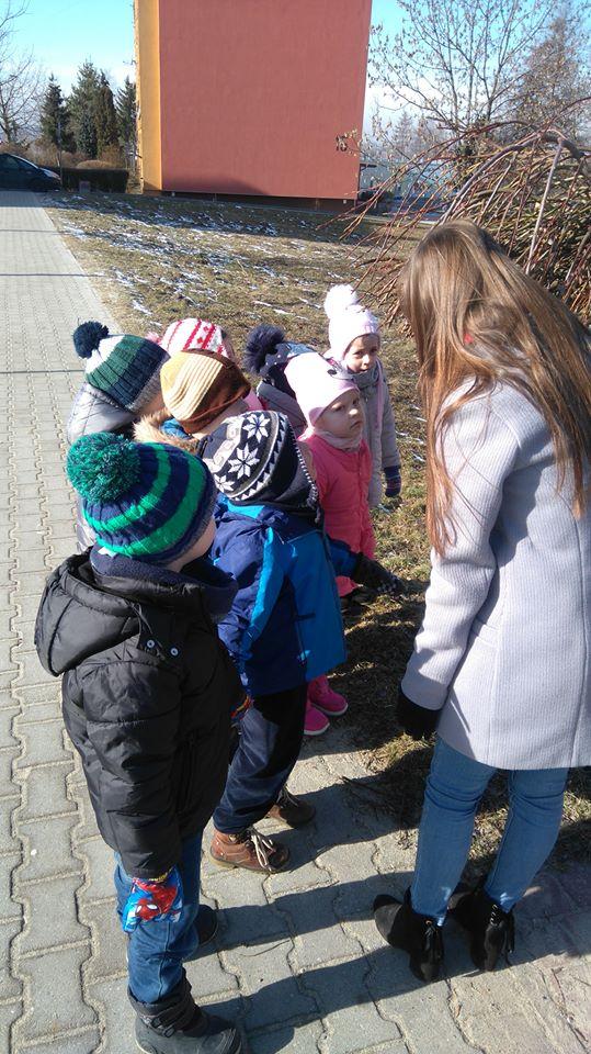 Jeżyki w poszukiwaniu oznak wiosny