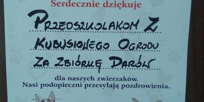 Zbiórka dla Schroniska i odwiedziny pieska w przedszkolu :)