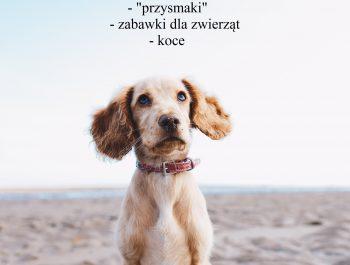 """Zbiórka karmy dla Schroniska """"Psie Pole"""""""